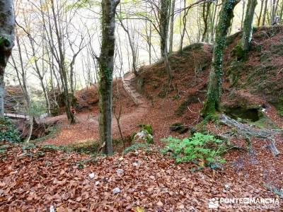Parques Naturales Urbasa-Andía y Aralar - Nacedero del Urederra; viajes en otoño